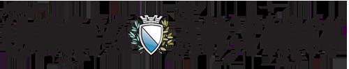 Logo_Tagesanzeiger